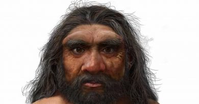 Cientistas descobrem novo hominínio na China batizado de 'Homem Dragão'